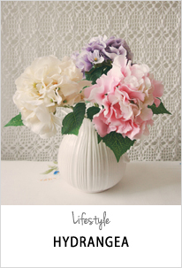 single origin hydrangea