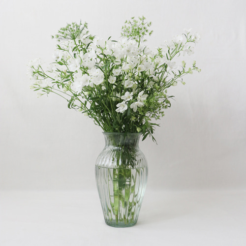 [by mani] bonito glass vase